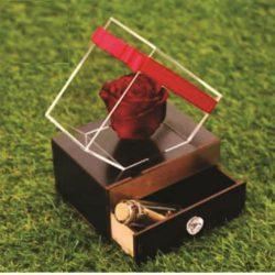 باکس گل الماس کشو دار